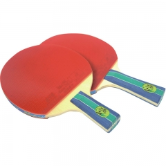 Double Fish Indoor Ping Pong Racquet